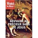 NEUVAINE AU PRECIEUX SANG DE JESUS en téléchargement