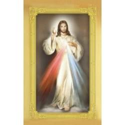 Carte-prière + médaille : Christ Miséricordieux