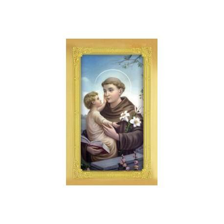 Carte-prière + médaille : Saint Antoine